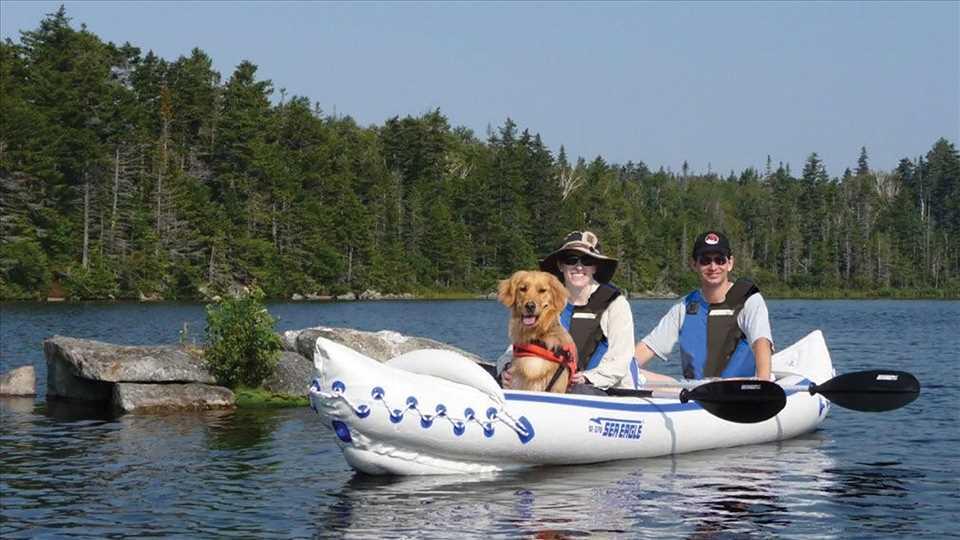 Sea Eagle SE 370, SE 370 with dog, Dog, Sea Eagle SE 370 Dog