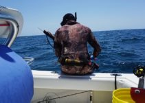 how to spaerfish, spearfishing, spear fish